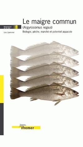 Le maigre commun (argyrosomus regius) - Loïc Quéméner - Ifremer