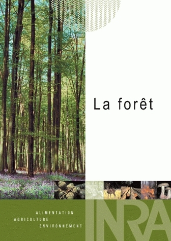 The Forest -  - Inra