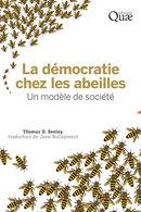 Bee democracy