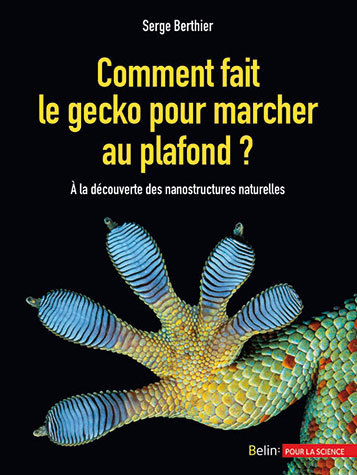 Comment fait le gecko pour marcher au plafond ? - Serge Berthier - Belin
