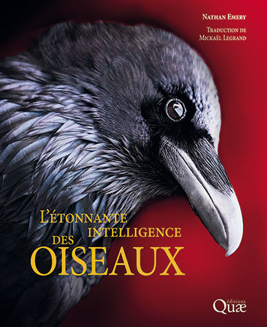 The amazing intelligence of birds - Nathan Emery - Éditions Quae