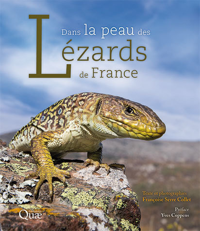 In the Skin of the Lizards of France - Françoise Serre Collet - Éditions Quae