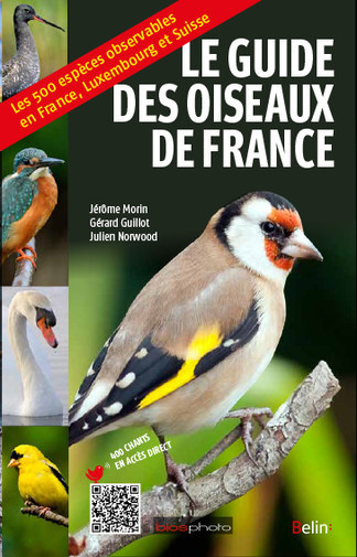 Le guide des oiseaux de France - Jérôme Morin, Gérard Guillot, Julien Norwood - Belin