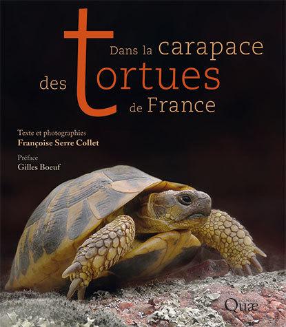 Dans la carapace des tortues de France - Françoise Serre Collet - Éditions Quae