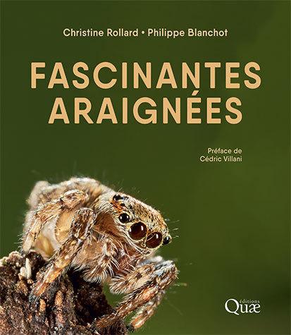 Fascinating spiders - Christine Rollard, Philippe Blanchot - Éditions Quae